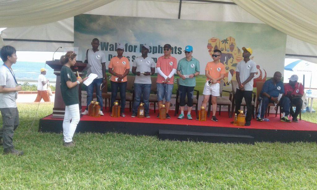 Walk 4 Elephants - Dar es Salaam Tanznaia