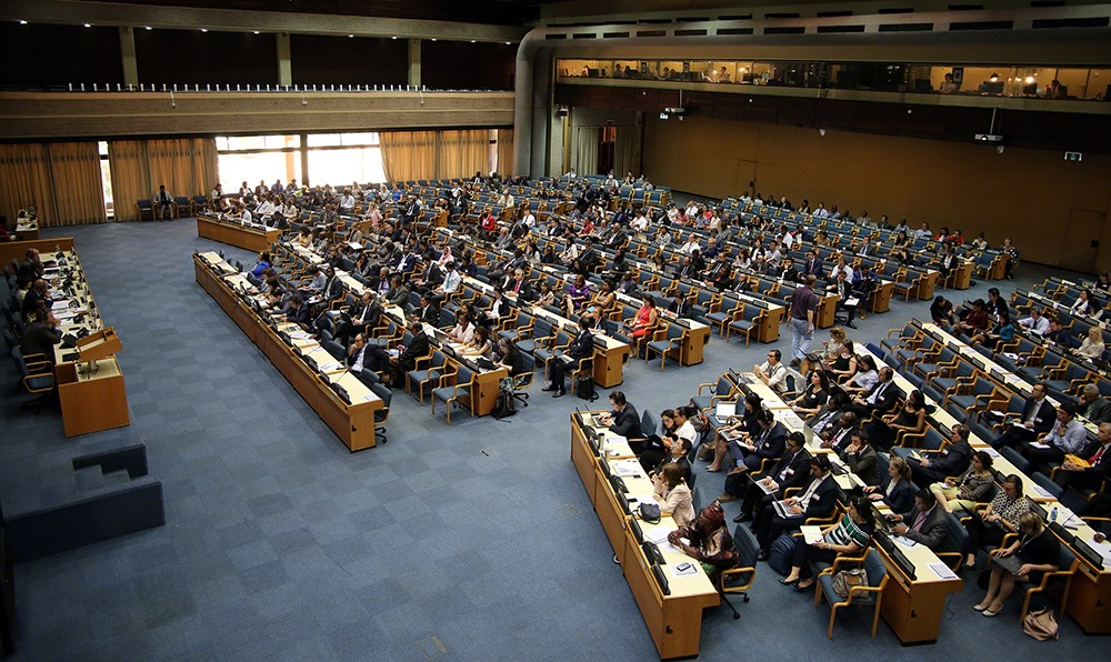 GPE OEWG Plenary in session
