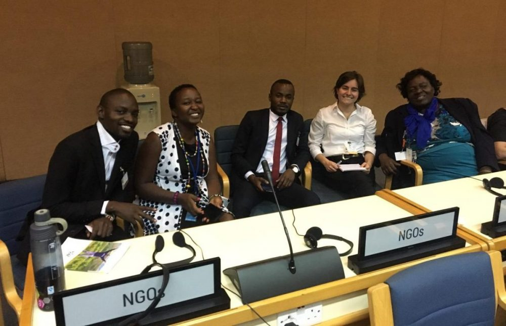 NGOs at the Global pact for the Environment
