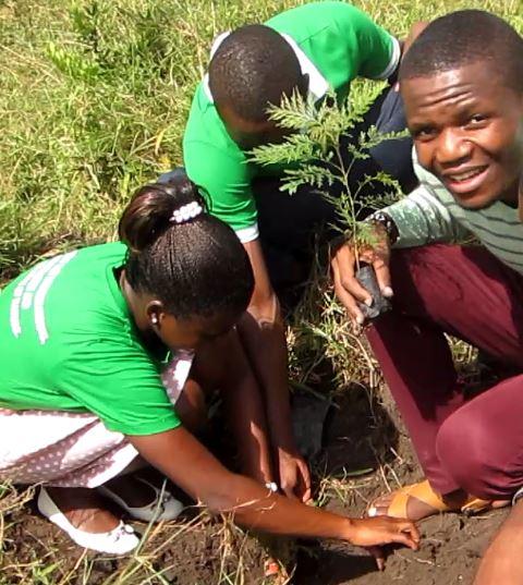 Tree planting in Uganda - Eliode Bakole