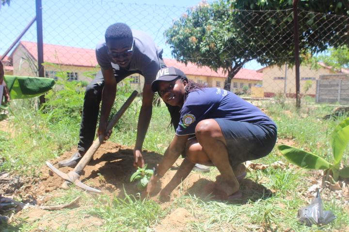 Tree Planting Masvingo Zimbabwe 2