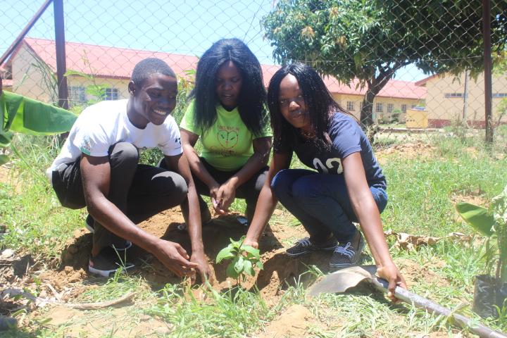 Tree Planting Masvingo Zimbabwe 4