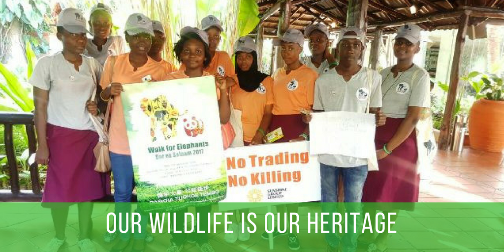 Walk For Elephants - Dar es Salaam Tanzania