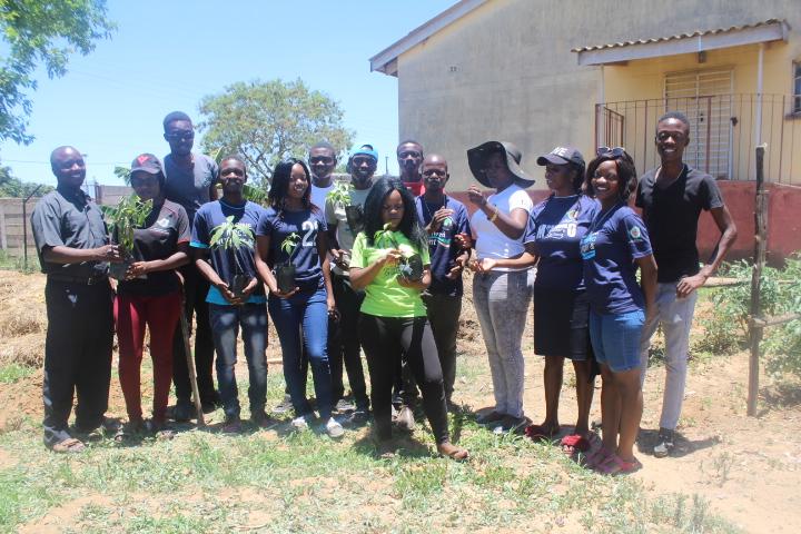 Tree Planting Masvingo Zimbabwe